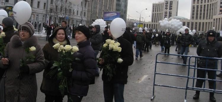 White roses for all